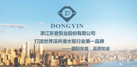 浙江东音泵业股份有限公司